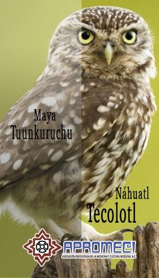 Tecolotl